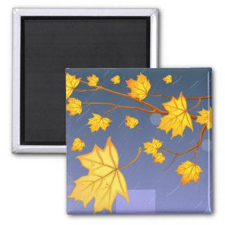 Herbst-Sturm Quadratischer Magnet