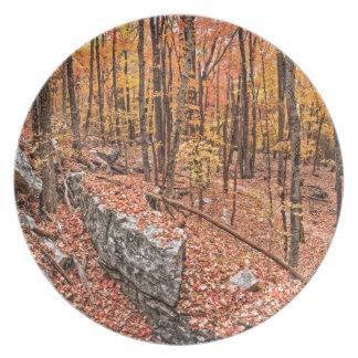 Herbst über der Spur Teller