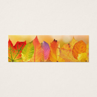 Herbst verlässt bunte moderne feine mini visitenkarte