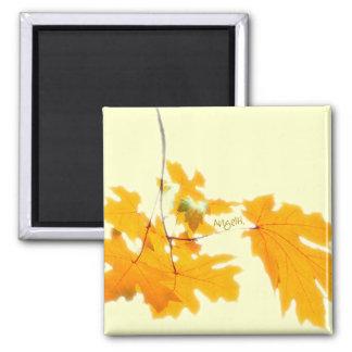Herbst verlässt Magneten Quadratischer Magnet