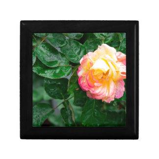 Herbst verwelkte Rose mit Regentropfen Schmuckschachtel