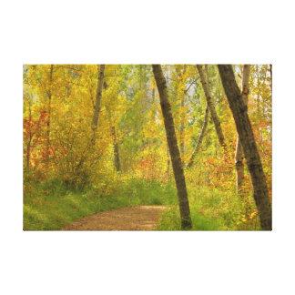 Herbst-Waldland Leinwanddruck