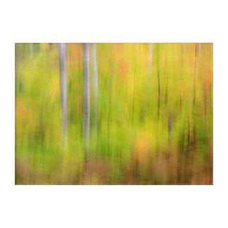 Herbst-Waldland | Michigan, obere Halbinsel Acryl Wandkunst