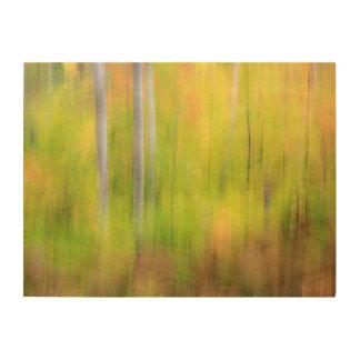 Herbst-Waldland | Michigan, obere Halbinsel Holzdruck