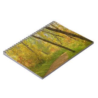 Herbst-Waldland Notizblock