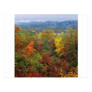 Herbst-weiße Kirche in Carolina Postkarte