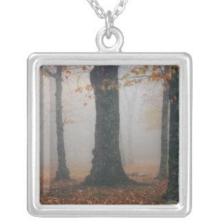 Herbstansicht des nebeligen Waldes, Großvater 2 Versilberte Kette