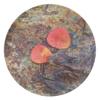 Herbstblatt auf Felsen, Kalifornien Teller