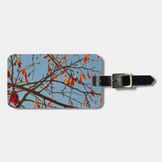 Herbstblätter Gepäckanhänger