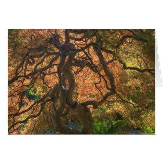 HerbstfarbeAhornbäume, Victoria, Briten 2 Karte