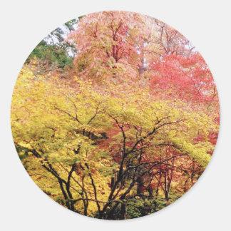 Herbstfarben in Seattle Runder Aufkleber
