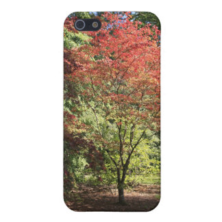 Herbstfarben iPhone 5 Case