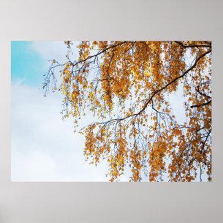 Herbstfarben Plakatdruck