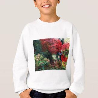 Herbstfarben und Herbst-Blätter Sweatshirt