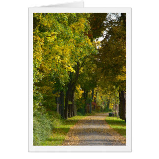 Herbstimpression Greeting Cards