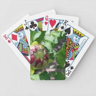 Herbstknospe Bicycle Spielkarten