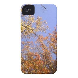 Herbstlaub 1 Case-Mate iPhone 4 hülle