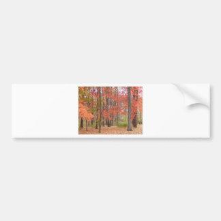 Herbstlaub Autoaufkleber