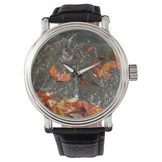 Herbstlaub Herbst-der Fotografie in des Armbanduhr