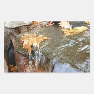 Herbstlaub Herbst-der Fotografie in des Rechteckiger Aufkleber