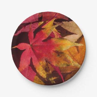 Herbstlaub, Herbstfarben, PapierTeller, Gewohnheit Pappteller