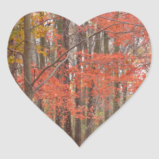 Herbstlaub Herz-Aufkleber