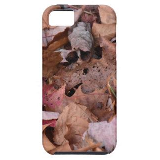 Herbstlaub in den rauchigen Bergen Hülle Fürs iPhone 5