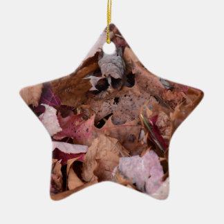 Herbstlaub in den rauchigen Bergen Keramik Stern-Ornament