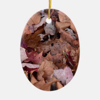 Herbstlaub in den rauchigen Bergen Ovales Keramik Ornament