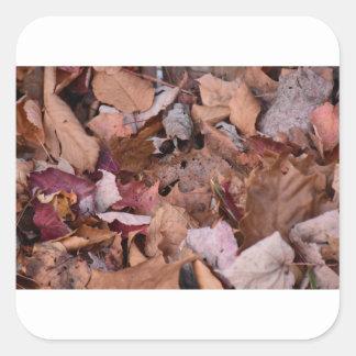 Herbstlaub in den rauchigen Bergen Quadratischer Aufkleber