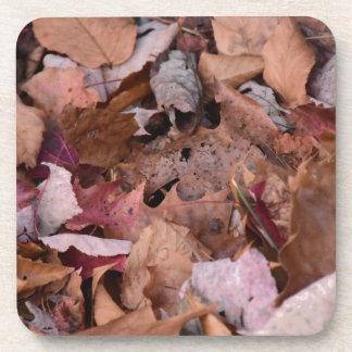 Herbstlaub in den rauchigen Bergen Untersetzer