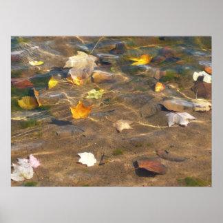 Herbstlaub in der Teich-Wasser-Natur-Fotografie Poster