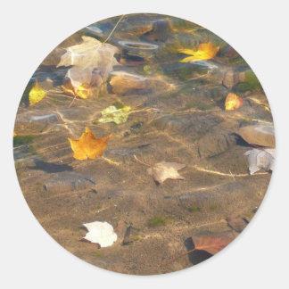 Herbstlaub in der Teich-Wasser-Natur-Fotografie Runder Aufkleber