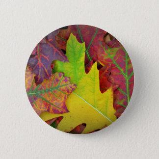 Herbstlaub in Gelbem, in Rotem, in Orange und in Runder Button 5,1 Cm