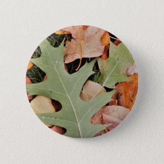 Herbstlaub mit Gelbs und Grün Runder Button 5,1 Cm