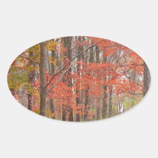 Herbstlaub Ovaler Aufkleber