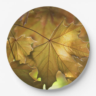 Herbstlaub Pappteller