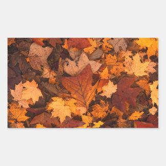 Herbstlaub Rechteckiger Aufkleber