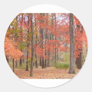 Herbstlaub Runder Aufkleber
