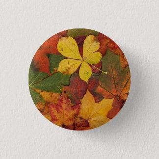Herbstlaub Runder Button 3,2 Cm