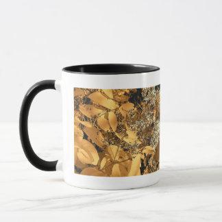 Herbstlaub Tasse