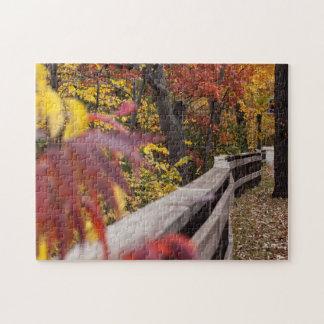 Herbstlaub und hölzernes Zaun-Fotopuzzlespiel Puzzle