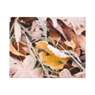 Herbstlaubphotographie Leinwanddruck