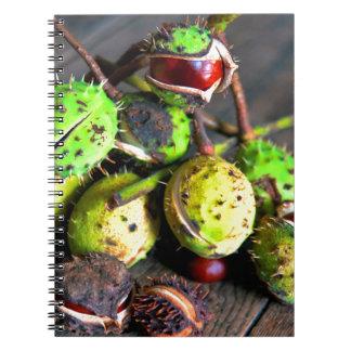 Herbstliches Stillleben mit Kastanien Notizblock