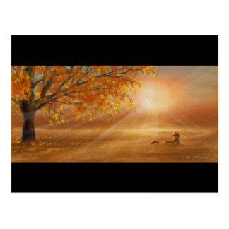 Herbstsonnenuntergangglühen Postkarte