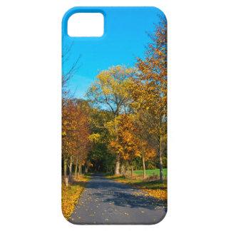 Herbststimmung im Goldenen Oktober iPhone 5 Schutzhülle