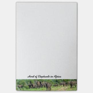 Herde der Elefant-Post-Itanmerkungen Post-it Klebezettel