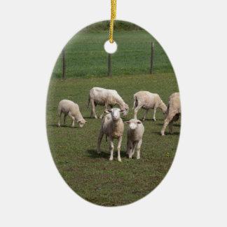 Herde der Schafe Ovales Keramik Ornament