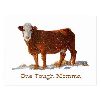 Hereford Kuh: Ein starkes Momma: Muttertag Postkarte