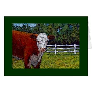 Hereford Kuh in der Weide: Illustration: Vieh Karte